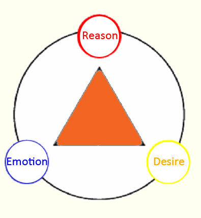 reason or emotion In everyday life to what extent do we use reason and to what extent so we use emotion to make decisions this is different for everyone.